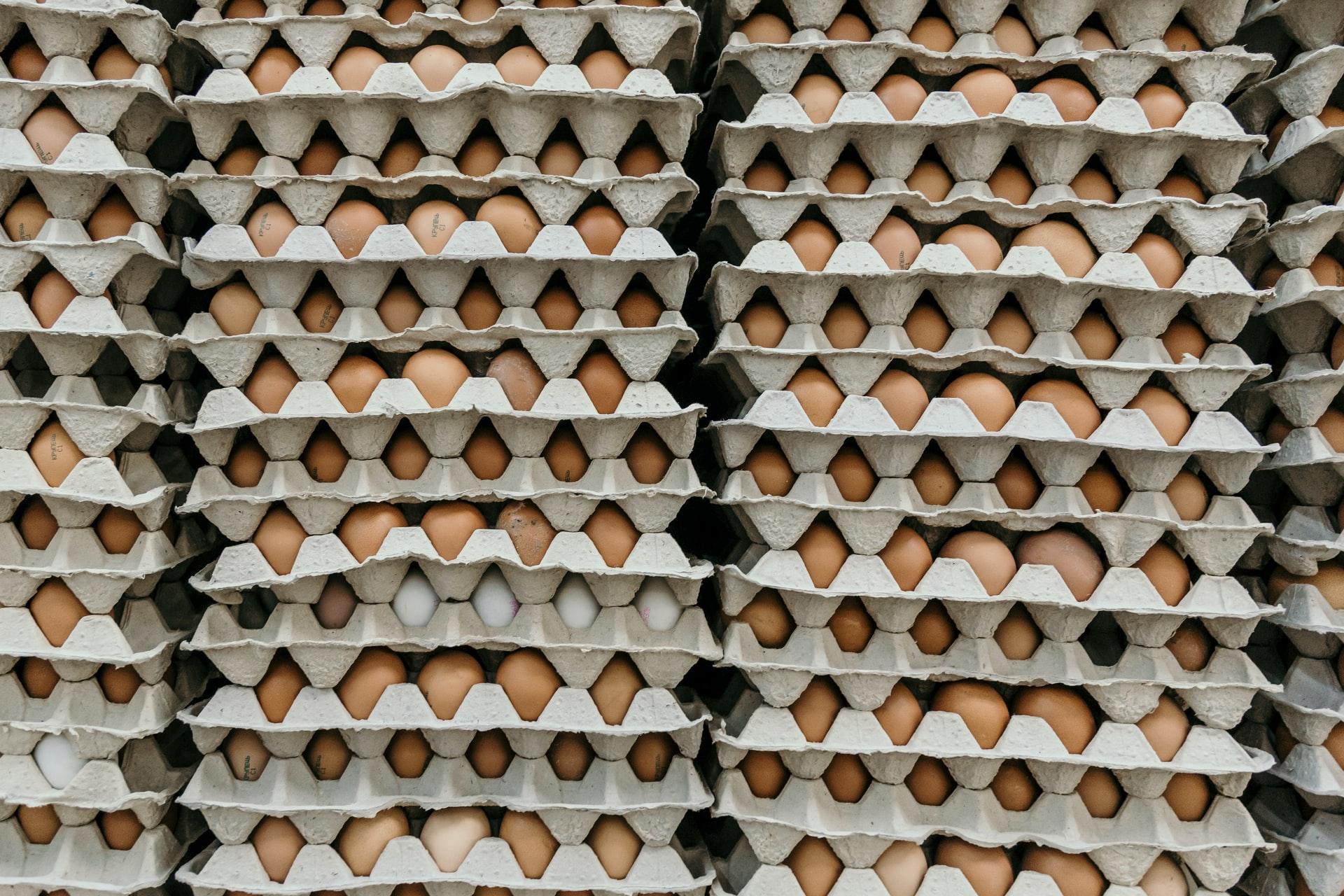 Plata na vejce i ruličky od toaleťáku. Obojí už patří do modré popelnice