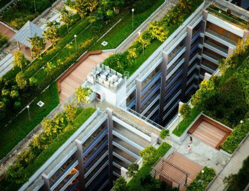 Stát zvýšil dotace na zelené střechy, samostatně je ale nezískáte